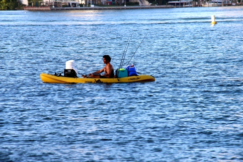 Kayaking_Miami_Vashti Quiroz-Vega's Blog