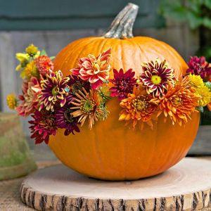 elegant_pumpkin_decoration