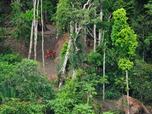 uncontacted-tribes-new-pictures-group_31964_600x450