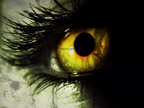 yellow_eyed_demon_by_pufferfishcat-d4w6kox