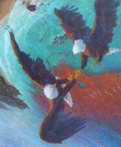 gallup.d-Vertigo - Whirling Bald Eagles Over Santa Cruz Island