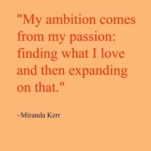 Ambition-quote-The Writer Next Door