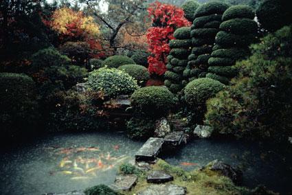 japanese-garden-photo-2