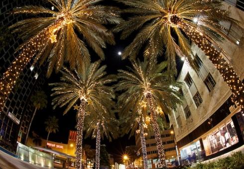 miami-christmas-the writer next door