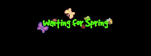 spring-bugs-haiku-poetry