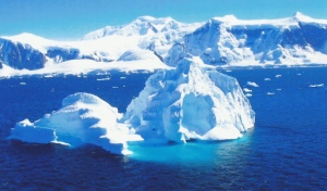 antarctica-photo-Cindy Knoke