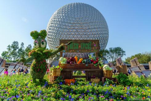 Epcot-International-Flower-and-Garden-Festival-Vashti Q