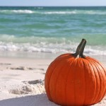autumn-The Writer Next Door-Vashti Q-Poetry-quotes-Florida-fall