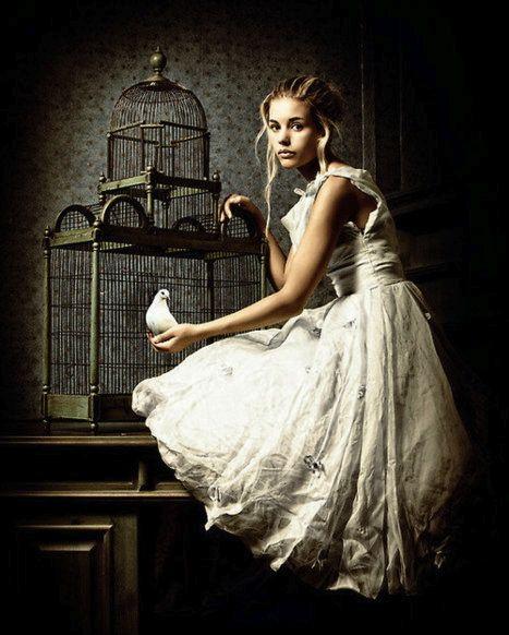 bird-cage-poetry-haiku-Friday-The Writer Next Door-Vashti Q