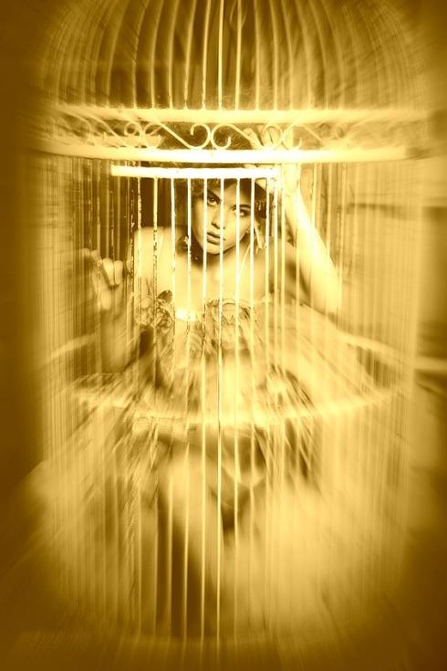 gilded-cage-Haiku-Friday-Poetry-The Writer Next Door-Vashti Q