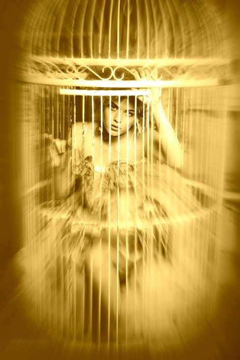 gilded-cage-Haiku-Friday-Poetry-The Writer Next Door-Vashti Q