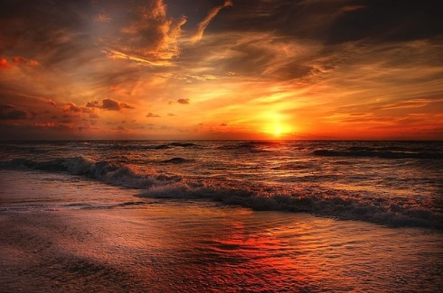 salt_life_writer-beach-sunrise-The Writer Next Door-Vashti Q-Haiku_Friday-Poetry