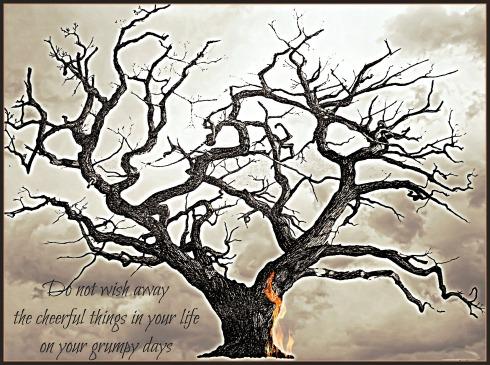 Poetry_Friday-Poetry-haiku-haibun-Vashti Quiroz Vega-Vashti Q-Colleen Chesebro-Tanka_Tuesday-Twitter-short_story
