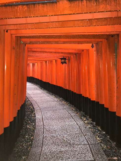 Japan-Kyoto-Torii Gates-Poetry_Friday-Vashti Quiroz Vega-Tanka-micro poetry-Vashti Q