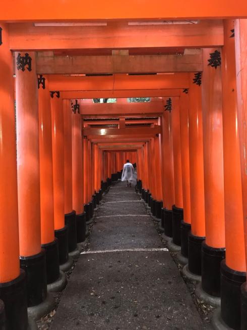 Poetry_Friday-Tanka-Vashti Quiroz Vega-Japan-Vashti Q-Torii Gates