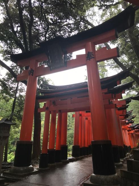 Torii Gates-Japan-Poetry_Friday-Tanka-Vashti Quiroz Vega-Japanese-Vashti Q