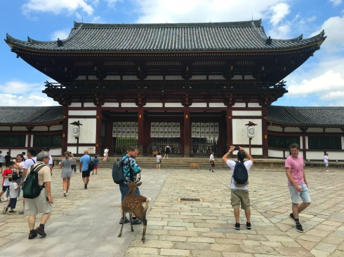 Nara-shrine-Japan-park-Vashti Quiroz Vega-Poetry_Friday-Tanka-poem