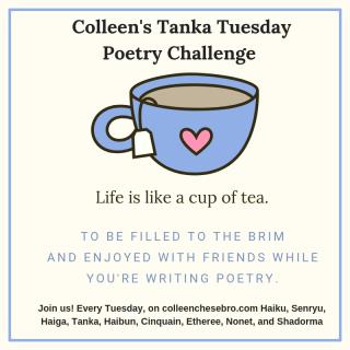 tanka tuesday-colleen chesebro-poetry challenge-Poetry-vashti quiroz vega-Vashti Q