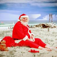 Poetry Friday ~ Christmas in Florida